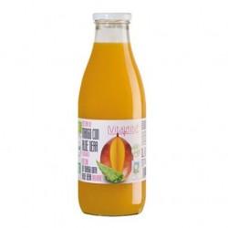 Zumo de Mango & Aloe BIO