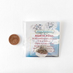 Mineral Agata Fosil
